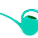 Green plastic watering can (gardening equipment)